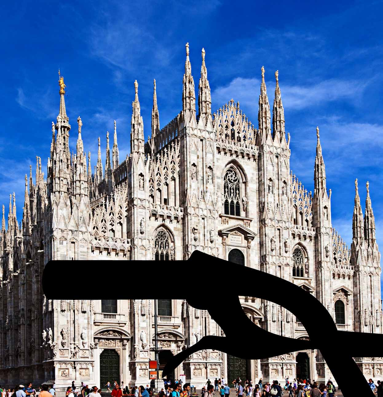 bike tour milan